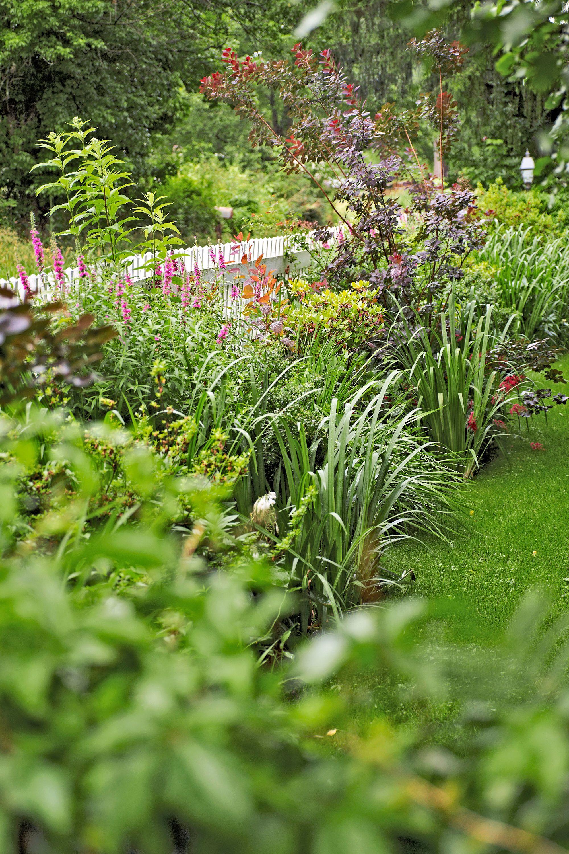 fresh new landscaping ideas for your yard piha ja puutarha