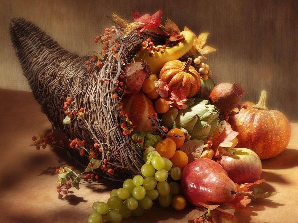 Cornucopia Fall amp Thanksgiving Pinterest