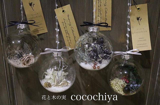 Instagram media by cocochiya_yumiko - ・ 花と木の実と Xmas +ガラスボール+ 4個set♡ご用意致しました♪ XmasツリーやXmasタペストリーにオススメです ・ 「花と木の実cocochiya」ガラスボール4個set ご好評につき、限定20個ご用意致します。 発送は、11月下旬〜12月上旬。 オーダー頂いた順に発送させて頂きます。 オーダーはダイレクトまたは、出展イベント、個展にて承ります。お気軽にお問い合わせください◡̈❁ ・ 自然素材の為、多少の違いはございますが同じ組み合わせでお作り致します。 プリザーブドフラワー・木の実・羽でお作りする、自然素材のオーナメントです。 プリザーブドフラワーですので、この綺麗なお色も永く楽しめます♪ ・ ・ ・…