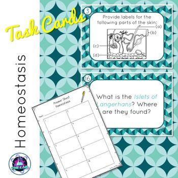 Homeostasis Task Cards | Task cards, Cards, Biology