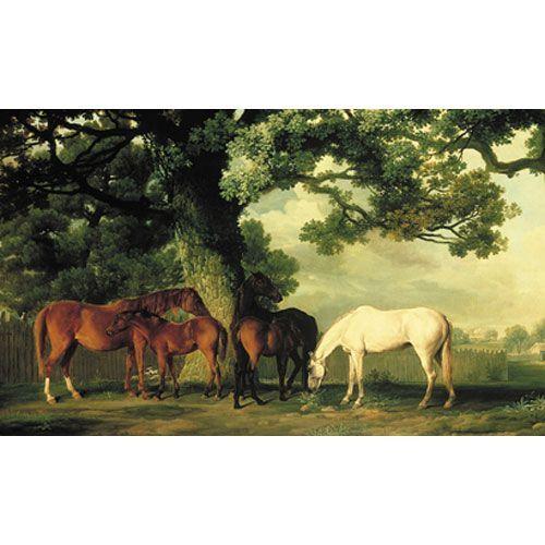 Mural Portfolio II Green Pastures With Shady Glen, Thoroughbred Horses Mural Wallpaper Wa