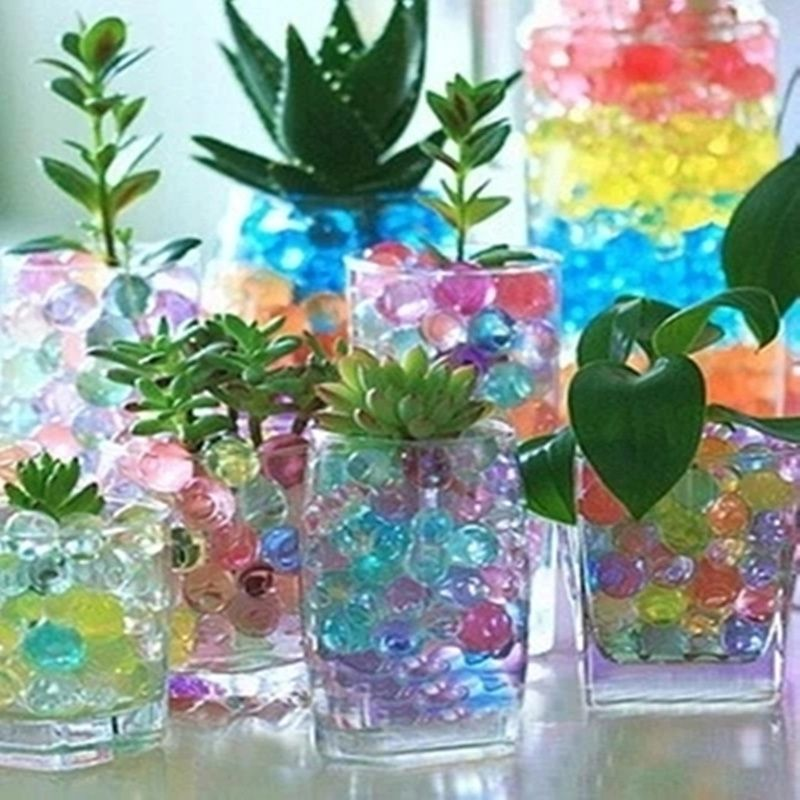 Cool For Kids Rooms Small Plants Growing In Glass Tumblers With