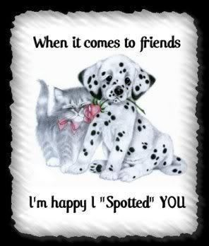 When it comes to friends  I'm happy I spotted you