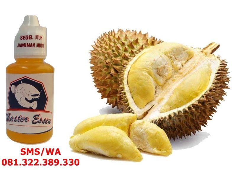 Essen Aroma Wangi Durian Untuk Ikan Mas Ikan Mas