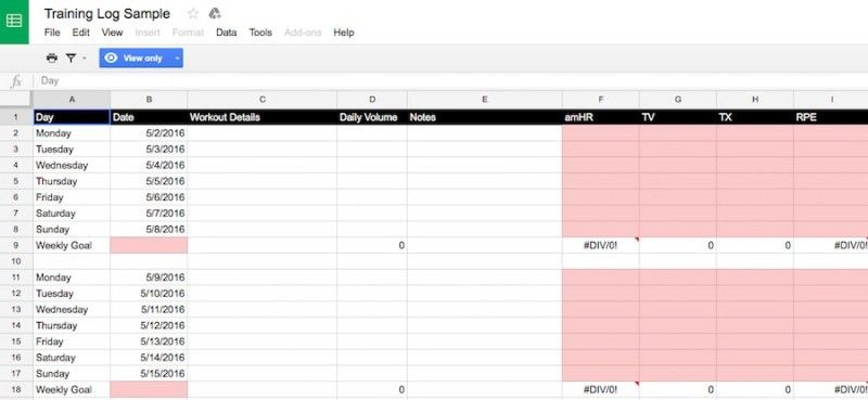 Google Sheets Training Log | Running and Fitness | Workout