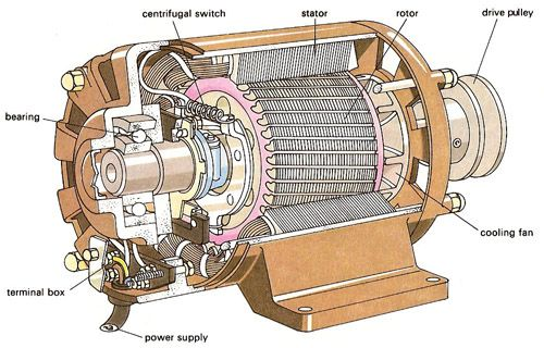 Single Phase Ac Motor Forward Reverse Wiring Diagram Doorbell Schematic Cutaway Of A Fractional Horsepower Induction
