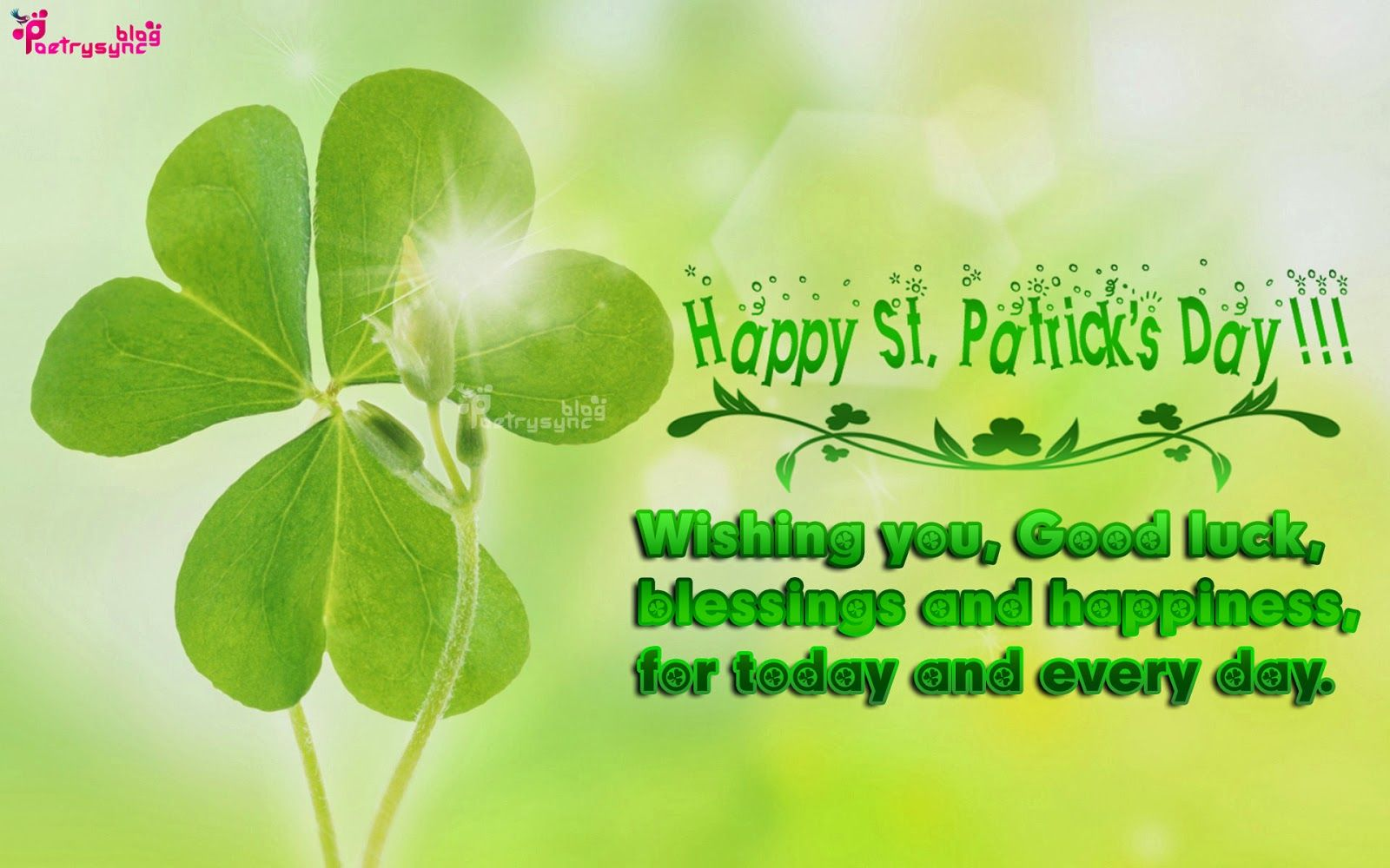 Happy St Patricks Day Greetings Sayings And Quote Picture And Patty