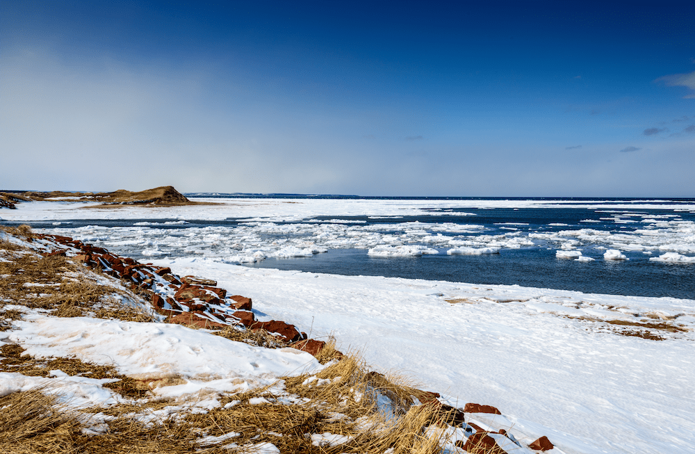 20 Things To Do On Cape Cod In The Winter