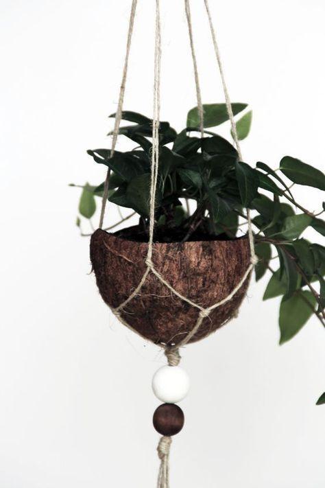 Mit einer Kokosnuss basteln: Makramee-Blumenampel #hangingbaskets