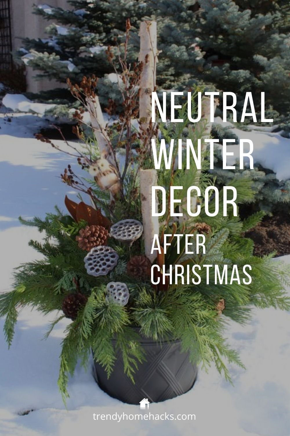 Neutral Winter Decor How To Decorate After Christmas Trendy Home Hacks Winter Decor Neutral Winter Decor Winter Decorations Diy