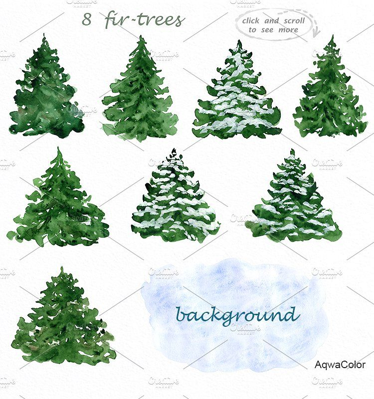 Fir Trees Watercolor Clipart Watercolor Trees Fir Tree Christmas Watercolor