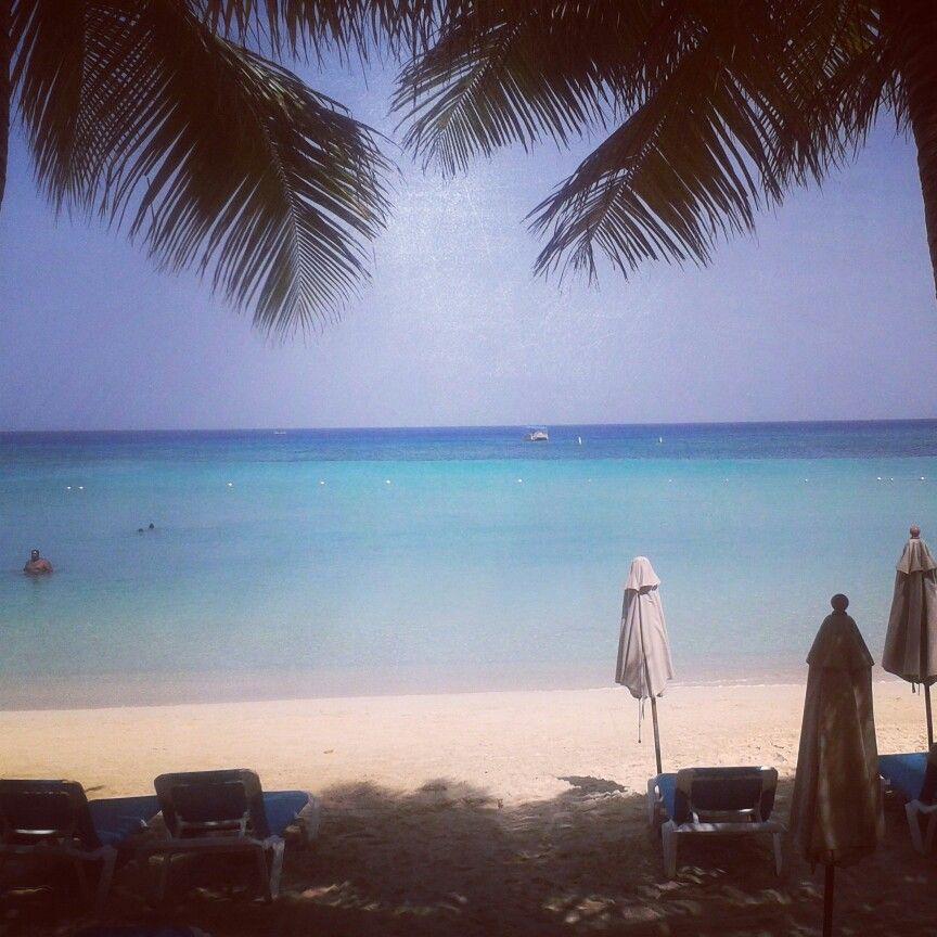 #Honduras #♥myCountry #Roatan #Island  One of the best reefs in the world. Uno de los mejores arrecifes del mundo.
