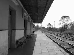 os caminhos do trem da vida