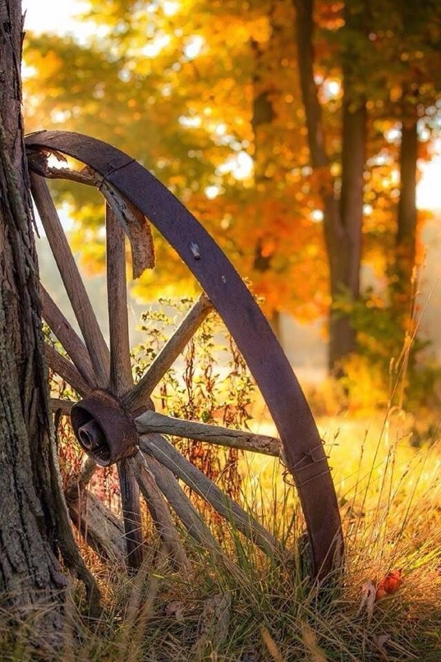 Moment's #autumnscenery