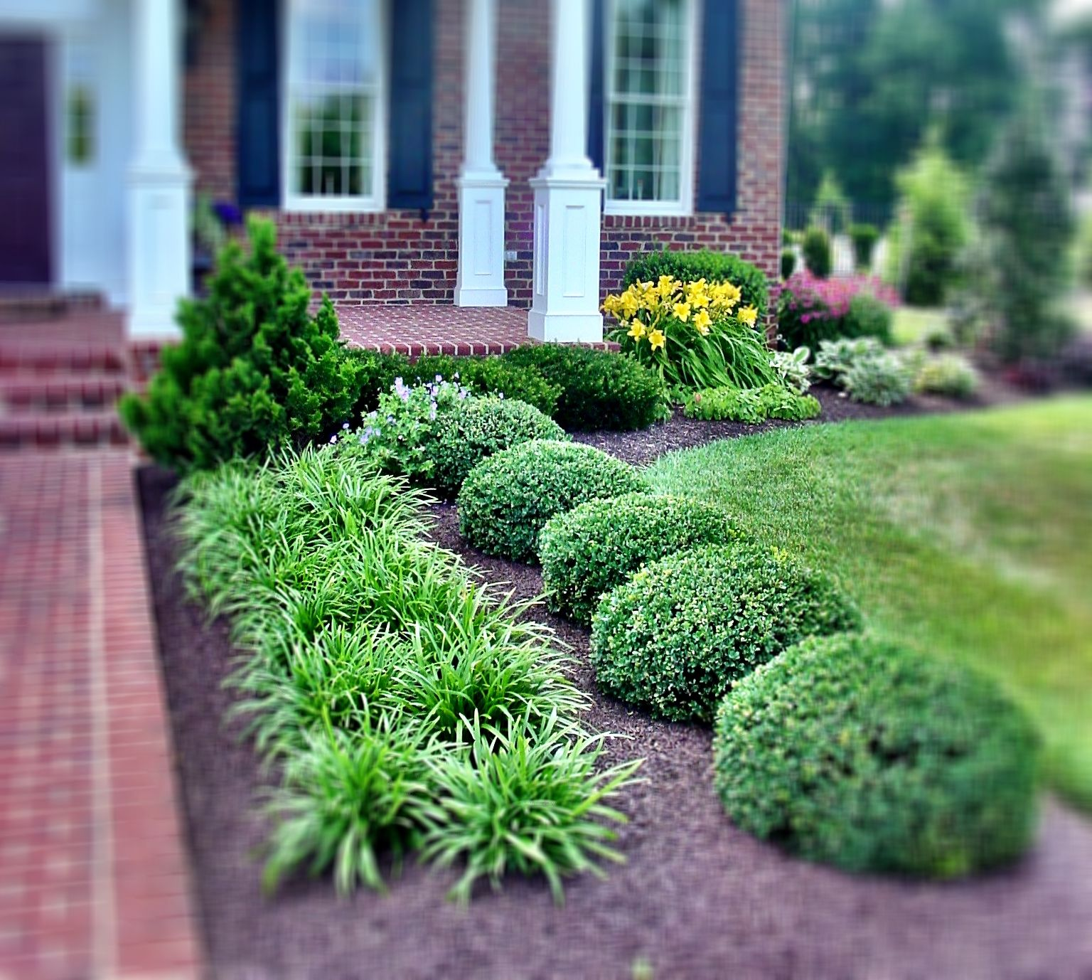 Mulch ideas use of symmetrical planting with gorgeous for Square front yard landscaping ideas
