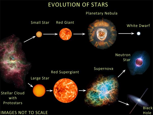 Stellar Evolution, Neutron Stars and Black Holes: Part 1 | Neutron star,  Space and astronomy, Science