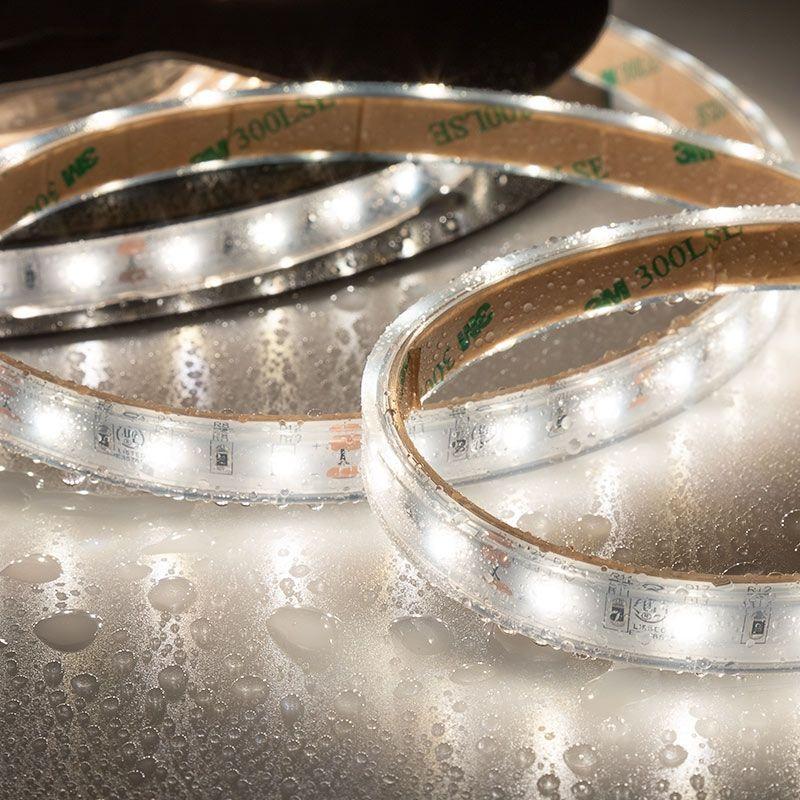 5m White Led Strip Light Highlight Series Tape Light 12 24v Ip67 Waterproof Tape Lights Led Strip Lighting Strip Lighting