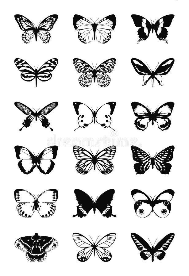 Butterfly stock illustration. Illustration of white, shape - 23929333