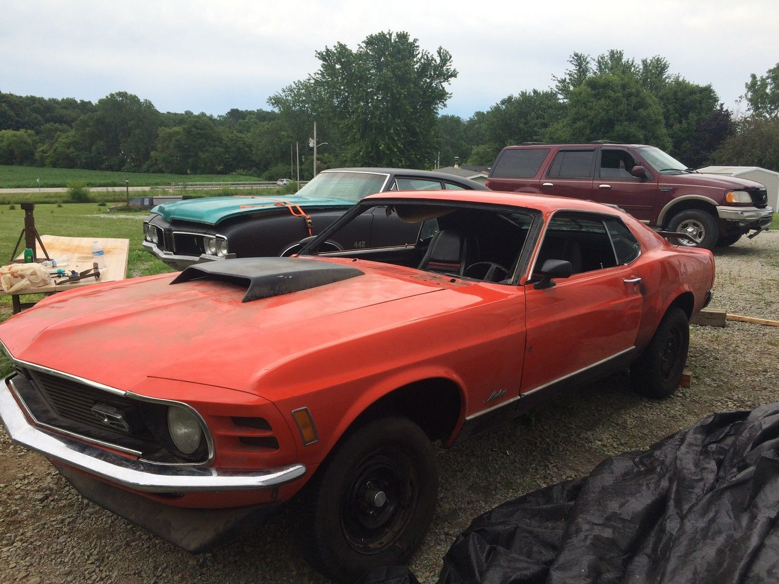 Ford Mustang Mach 1 | eBay | Mustangs Projects | Pinterest ...