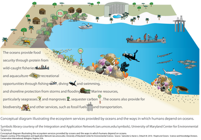 ecosystem services of the ocean ecosystems pinterest Ocean Ecosystem Worksheet ecosystem services of the ocean