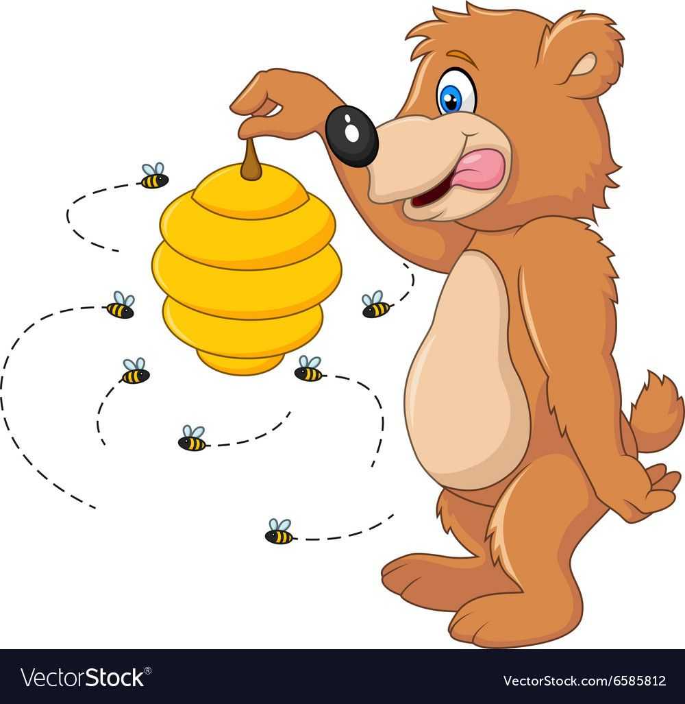 Cute bear holding Bee hive vector image on
