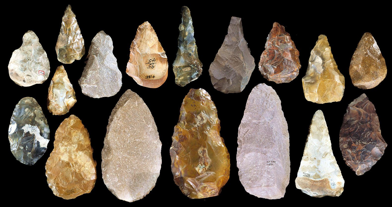 the findings from the paleolithic age in africa Though early humans started off living in africa, by the end of the paleolithic age, they had spread to the other continents the four finding food became more sophisticated with the invention of a spear thrower the hunter over 300,000 years ago, neanderthal hunter-gathers lived in africa and asia.