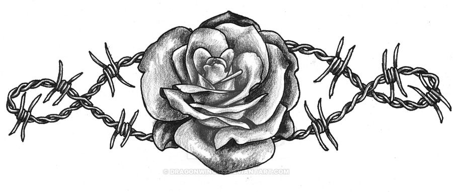 Barbed Wire Rose Tattoo: Barbed Wire Rose By Dragonwings13.deviantart.com On