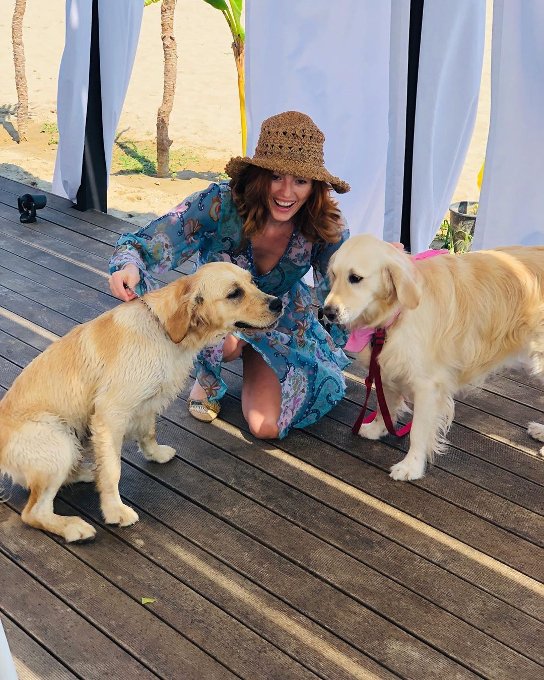 At Ilda S Lifestyle Blogger On Instagram Golden Retrievers