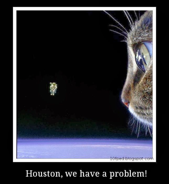 Find It Houston: Houston We Have A Problem