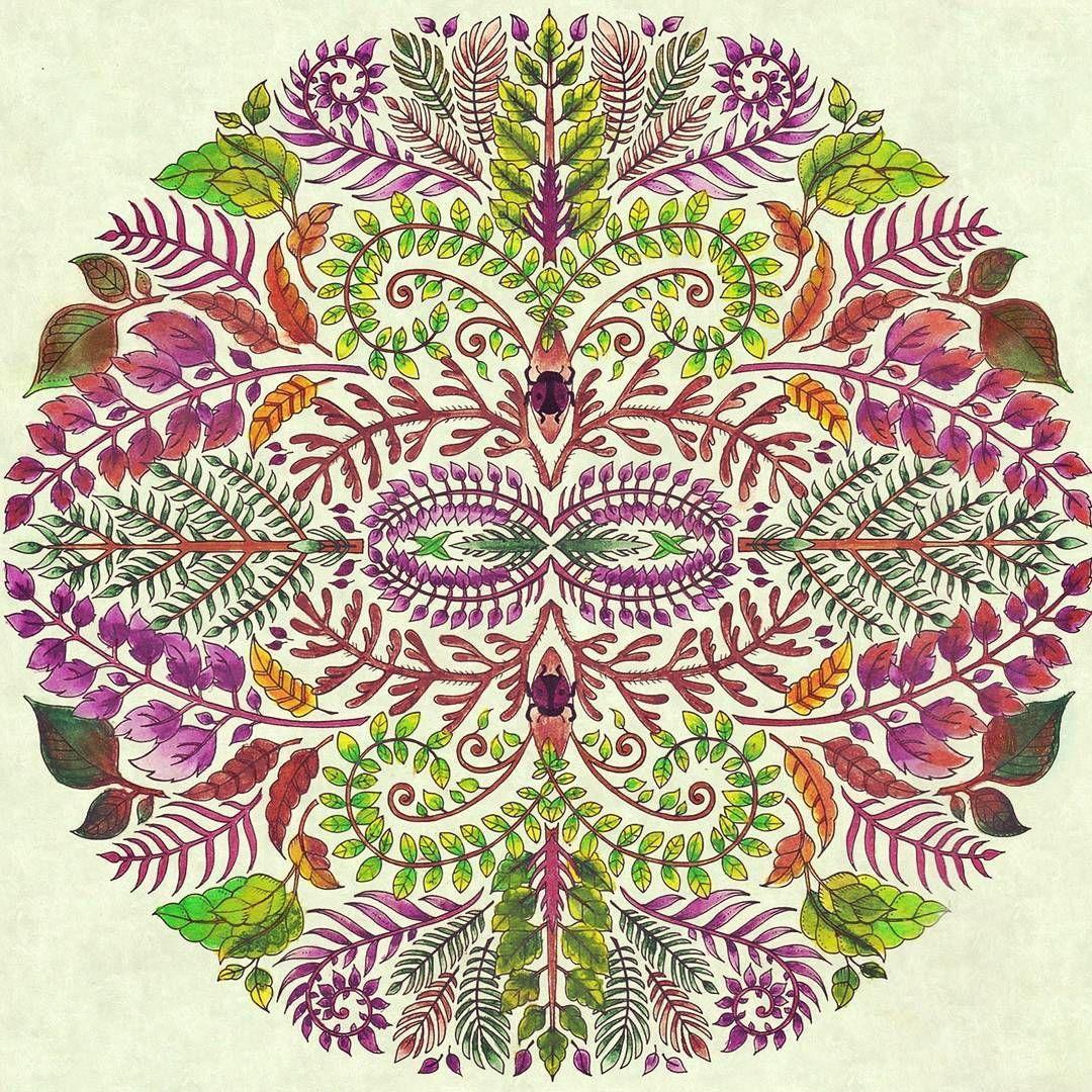 Zendoodle coloring enchanting gardens - Mandala Jungle Enchanted Forest Johanna Basfordcoloring Bookscolouringsecret Gardensjunglesmandalas
