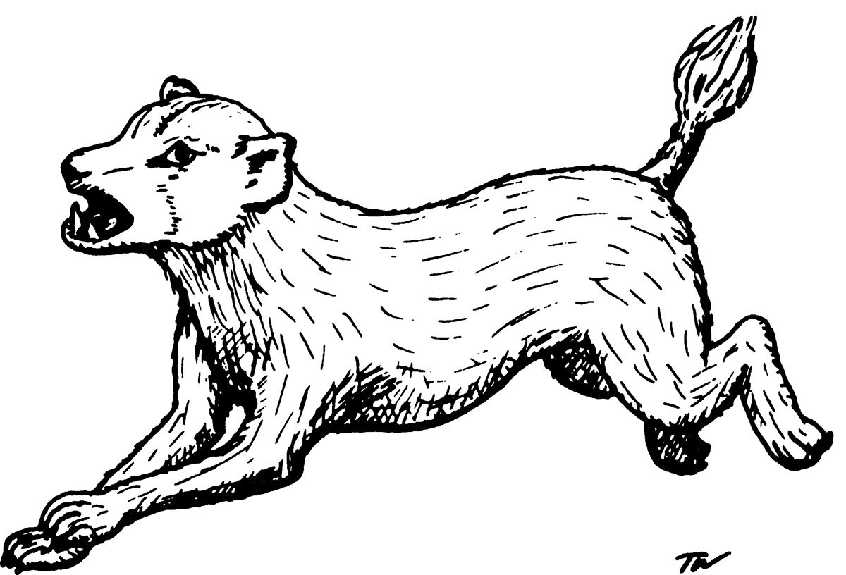 Blink dog (from the 1st Edition Monster Manual