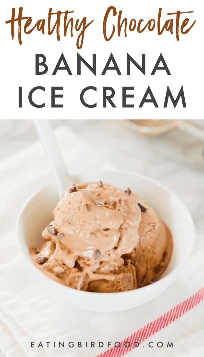 Make HEALTHY Chocolate Banana Ice Cream with frozen bananas, cacao powder, almond milk and almond butter. It's absolutely delicious, healthy, dairy-free and doesn't require an ice cream maker! #dairyfree #nicecream #banana #chocolate #icecream #bananaicecream #vegan #glutenfree #dessert #healthydessert #cleaneating #healthyicecream