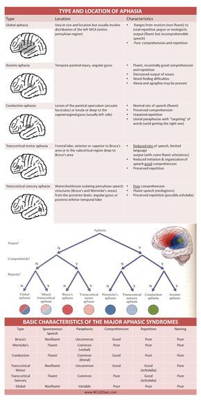 Type Location Basic Characteristics Of Aphasia Cheat