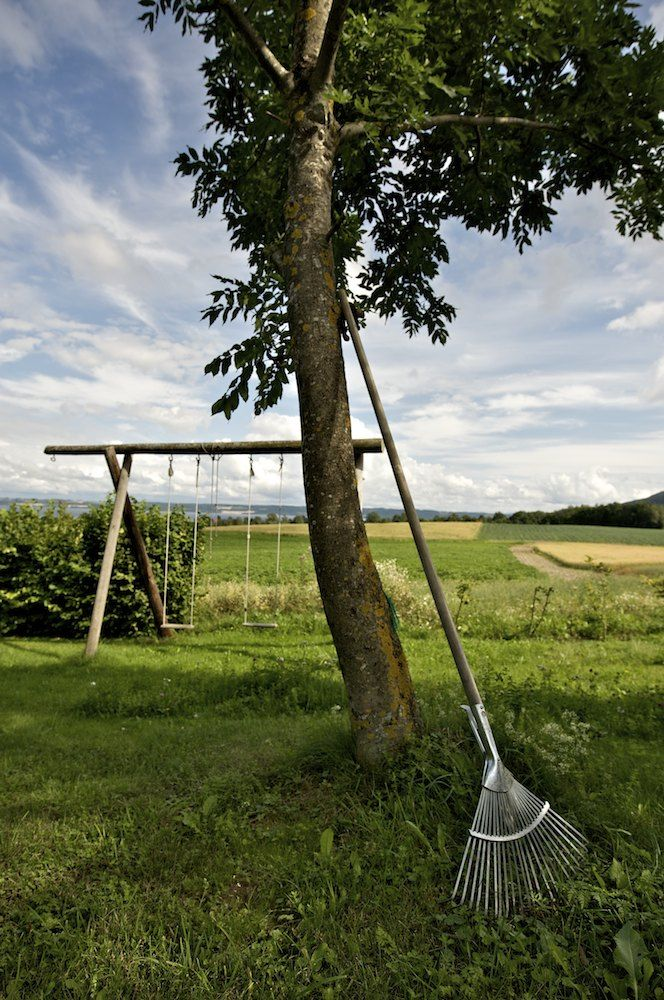 the perfect swings - for kids of all ages.