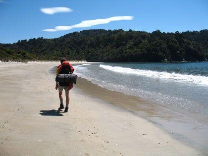 « Aotearoa », pays du long nuage blanc... - Blog de voyage -  Stewart Island - Rangiora Track 3 jours