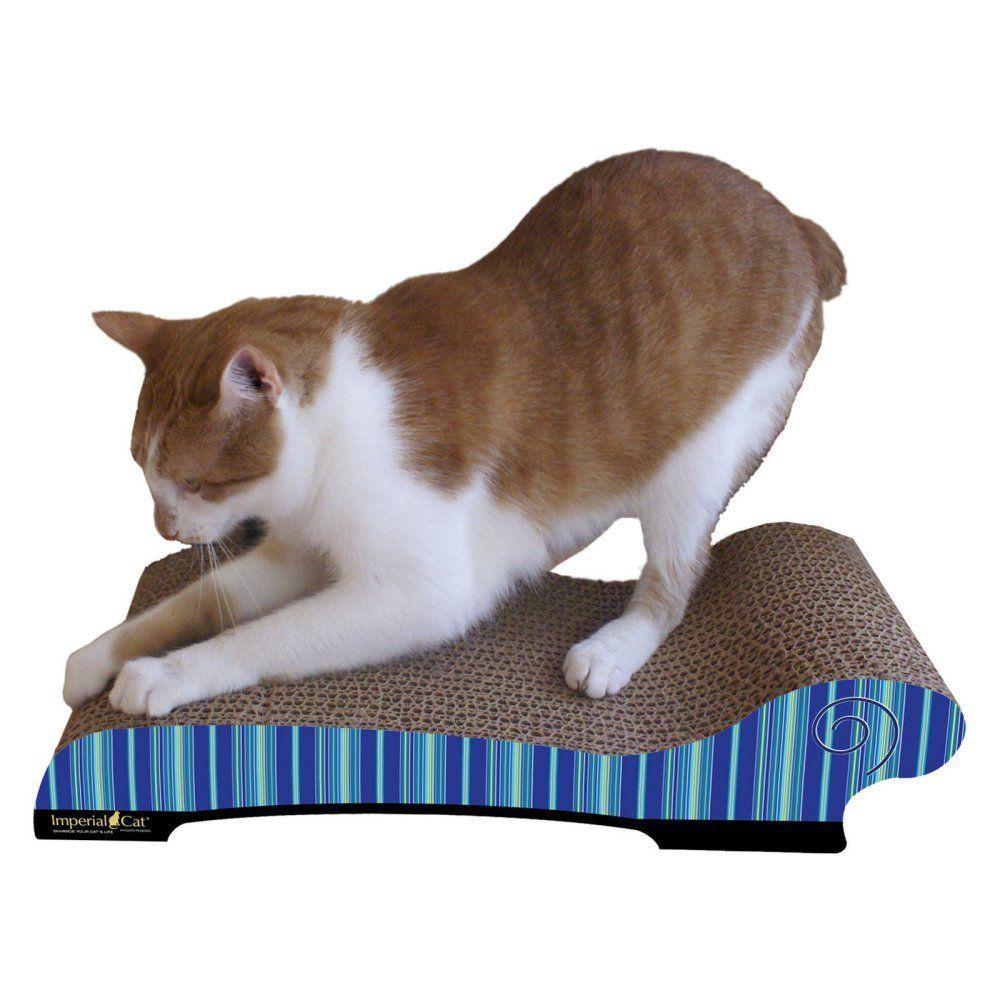 Pin On Cat Scratcher