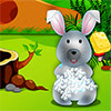 Cute Bunny Day Care - http://zoopgames.com/cute-bunny-day-care/ - Hey there! I'm so happy about this new caring game where finally I can spend my day with the most gorgeous animal: the rabbit! rnThe game is very complex and the rabbit expects from you a lot of interest and good mood so let's begin and see how it works. rnFirst step is to wash him... - animal games, caring games, games for girls, gamesmiracle, girls games
