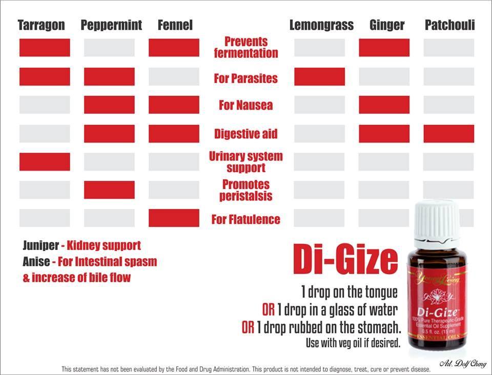 Di-Gize