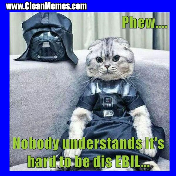 Cat Memes Clean Memes The Best The Most Online Page 2