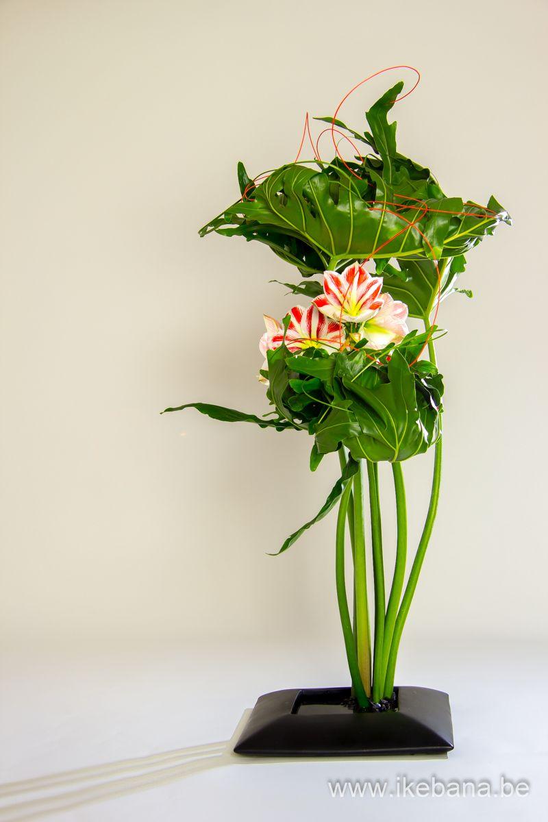 Sogetsu Ikebana with Monstera Leaves - Ilse Beunen Ikebana Flower  Arrangement, Ikebana Arrangements, Large