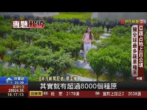 """全球最大""""蔬菜種原庫"""" 就在台南善化!"""