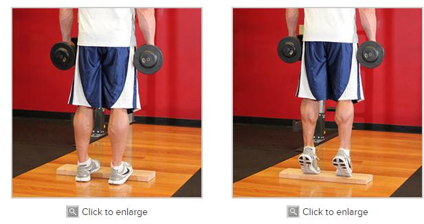 Standing Dumbbell Calf Raise Workout Legs Pinterest Workout
