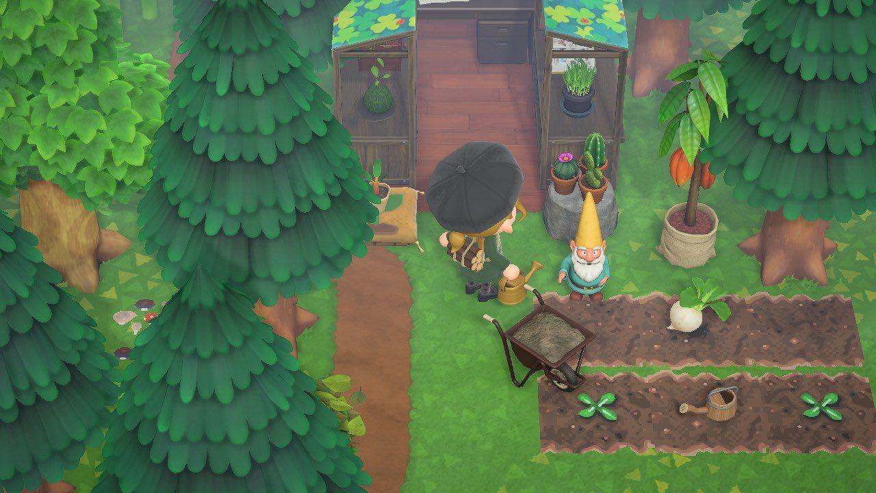 Sara On Twitter In 2020 Animal Crossing Plant Design Diy Greenhouse