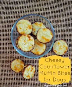 Pawsitively Pets: Homemade Dog Treat Recipe | Cheesy Cauliflower Muffin Bites for #Dogs!
