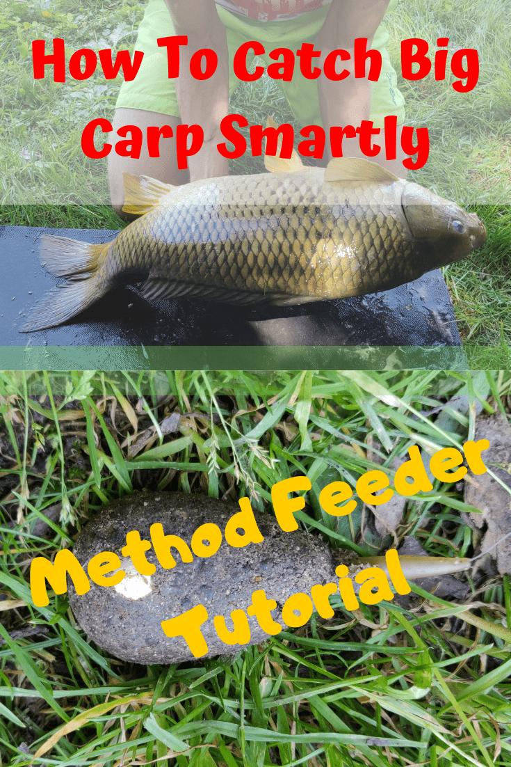 How To Catch Big Carp Smartly Method Feeder Tutorial Carp Fishing Tips Carp Fishing Bait Carp