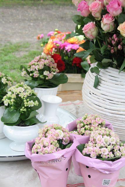 Floral bliss  xoxo--FleaingFrance