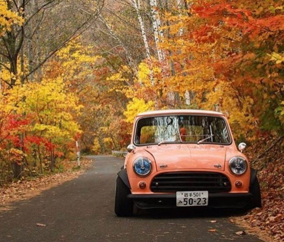 a very appropriate blending in with its surroundings owner hideki ishiu photo credit classic mini scenery classic pinterest