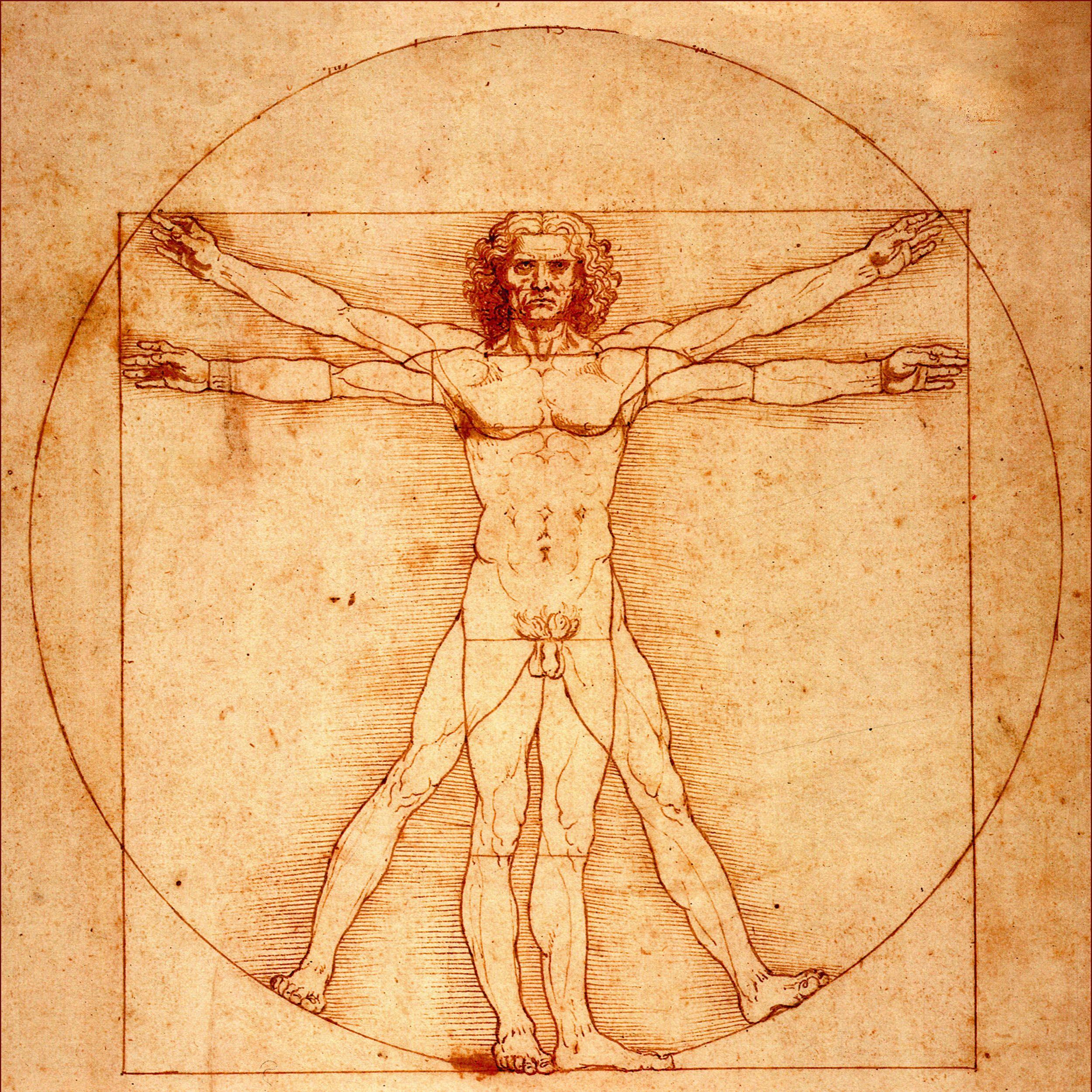 El Hombre de Vitruvio (de Leonardo da Vinci) | paintings | Pinterest