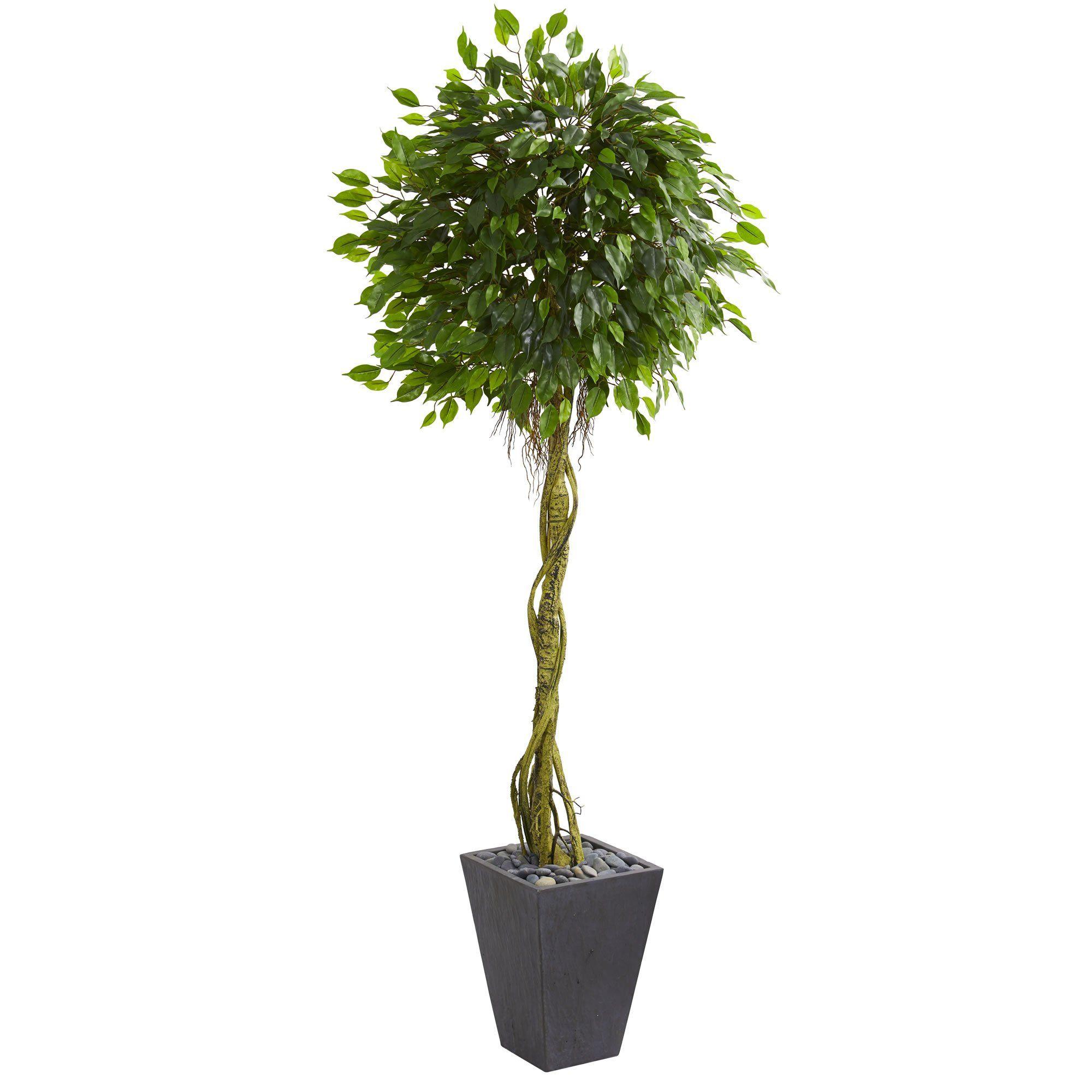 u Ficus Artificial Tree in Slate Planter UV Resistant Indoor
