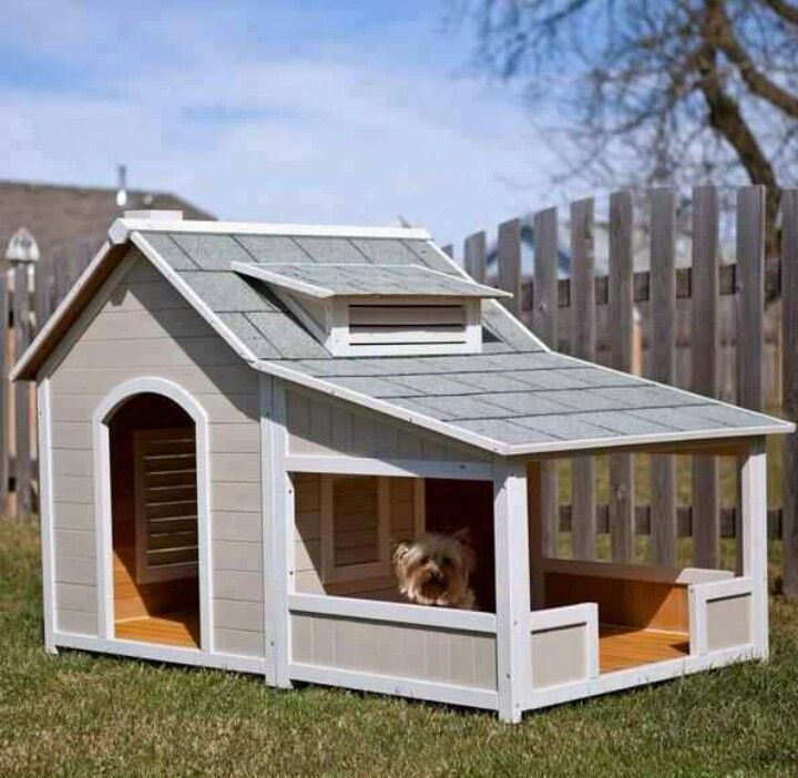 Doghouse With Yorkies Dog House With Porch